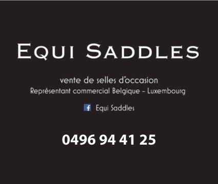 Equi Saddles